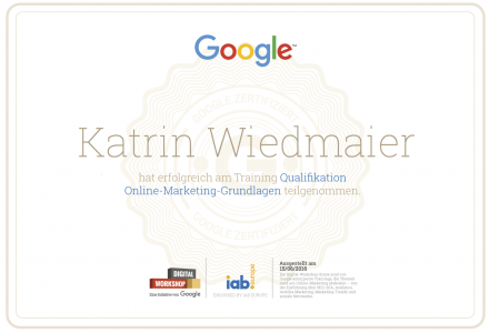 Google-Zertifikat, Online-Marketing Experte
